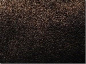 Leather Texture-37
