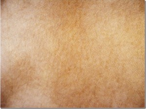 Leather Texture-45