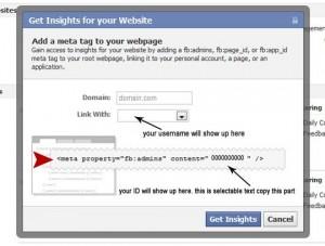 facebook insights id screen shot